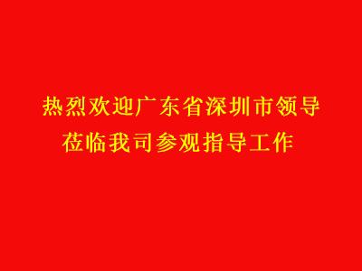 广东省深圳市领导莅临我司参观指导工作