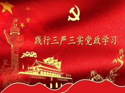 """""""三严三实""""党政学习"""