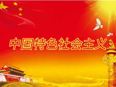 中央政法机关加强党的建设工作综述